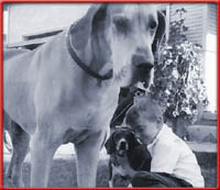 huge great dane with tiny beagle and kid