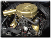 289 cubic inch V-8, black block with gold air cleaner and valve covers