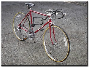 My Schwinn bicycle as it appeared in Fall 2001