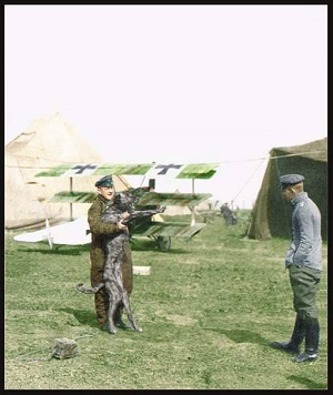 The Red Baron plays with his dog.